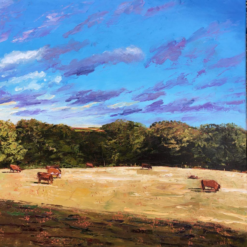 Grazing Fields , Penwith