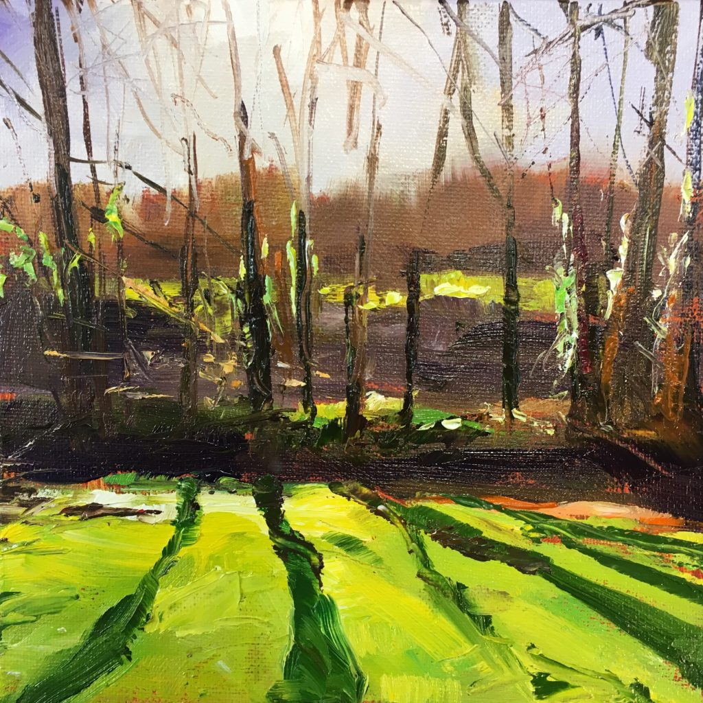 February Fields , Newlyn