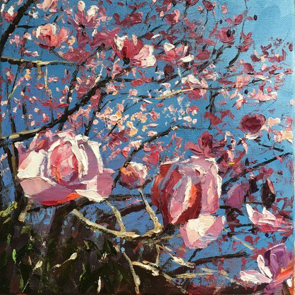 Magnolia , Trengwainton