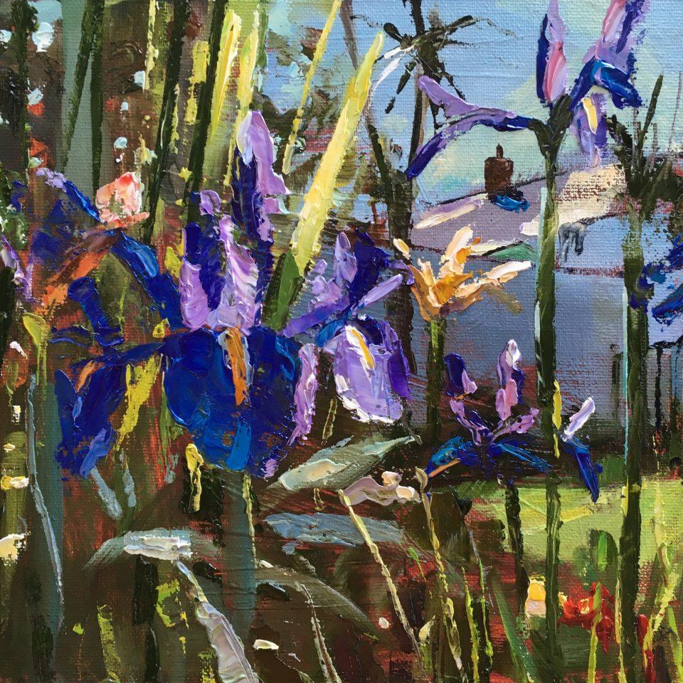 Irises What We Grown