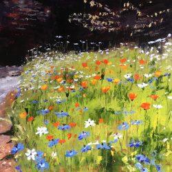 Trengwainton Wildflowers